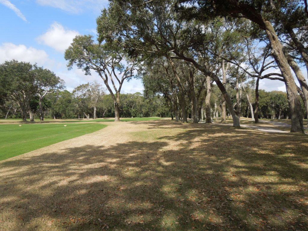 Amelia Island Golf